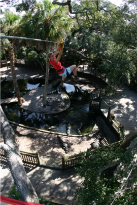 Zip Lining Florida Crocodile Crossing