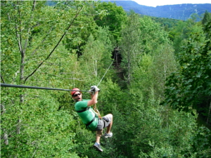 Arbor Trek Canopy Adventures